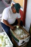 The Onion Peeler