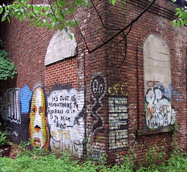 Graffiti In The Woods