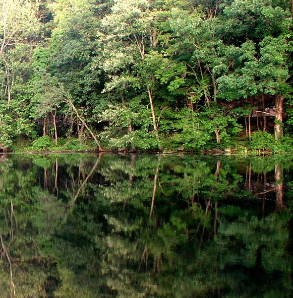 Morris Canal Locks