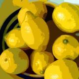 Lemons On A Plate 1