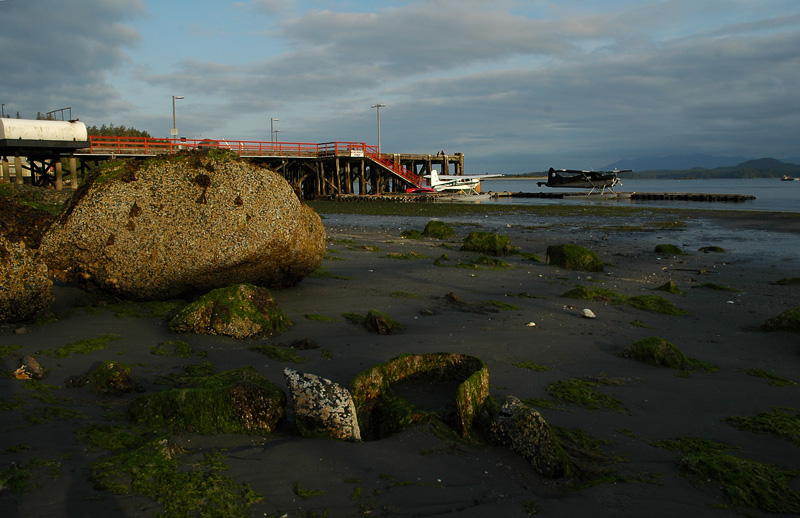 Tofino Harbour 3 - Low Tide