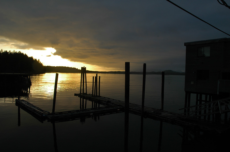 tofino harbour sunset2.jpg