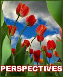 ASSIGNMENT: Perspectives
