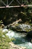 Butte Creek Bridge Rope Swing
