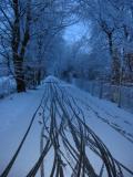snow in 2003