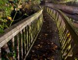 Darwin Bridge