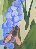 bluebells (detail)
