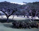 military cemetery p i