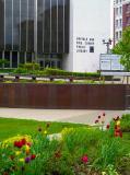 Buffalo Library