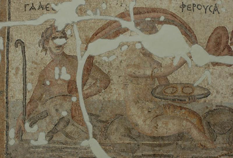 Antakya Museum 7504