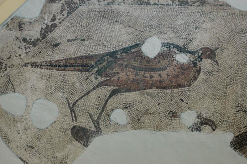 Antakya Museum 7658