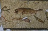 Antakya Museum 7572