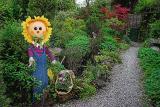 25th May 05 Sunflower Garden