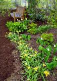 Garden Bench in Spring