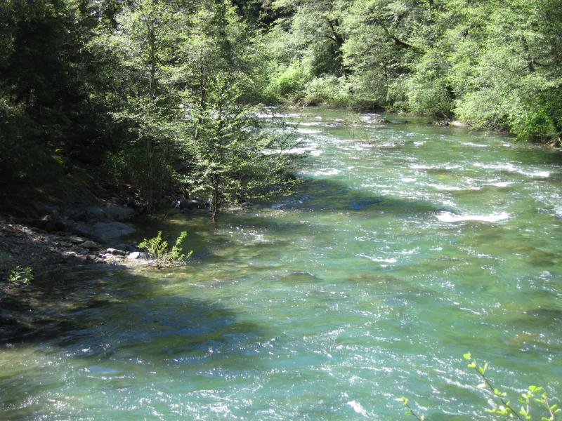 The water downstream