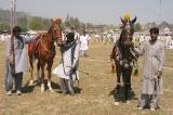 Showing off the horses at Vasakhi