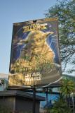 Yoda the Wise