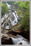 Holcomb Creek Falls - IMG_2368.jpg