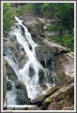Holcomb Creek Falls - IMG_2377.jpg
