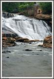 Reedy Falls - IMG_2718.jpg