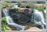 Reedy Falls - IMG_2738.jpg