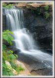 Reedy Falls - IMG_2749 - Cropped.jpg