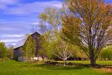 Barn & Trees