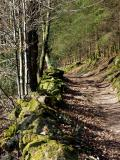 Chemin et son muret granitique