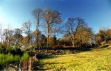 Ambazac - autumn