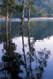 Jubilee Reservoir - ¦Ê¤d¼hË¼v¡D«°ªù¤ô¶í