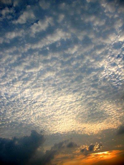 Mongkok sunset - ©ô¨¤¤é¸¨ 01
