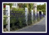 Lavender and railings