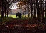 Fall walk ~ alain db