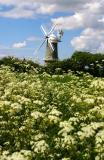 Scenes From Norfolk