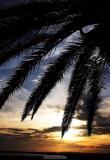 Spring in the Algarve - April 2005
