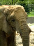 Cleveland Zoo
