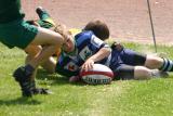 Champ Belgique 2005052806372 dpi.jpg