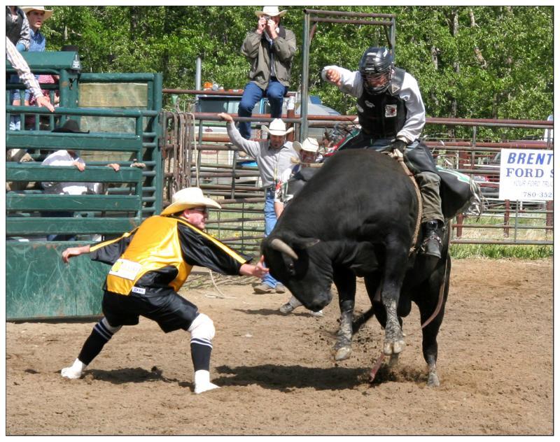 Bull Riding One