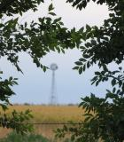 Distant Windmill Through The Trees