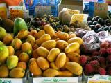 Mangosteen, Jack Fruit, Mamey, Chico, Star Apple, Rambutan, and Mangoes
