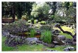 Japanischer Garten/Schönbrunn