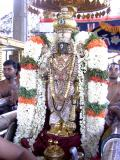 10-Sarathi