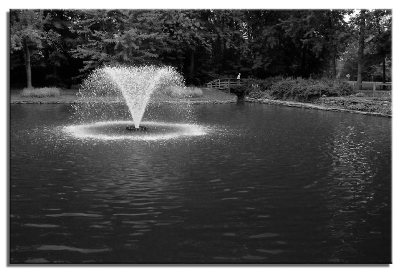Etang du parc Charbonneau