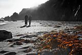 Beach couple with dried seaweeds (toned B&W)