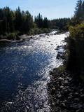 la rivière aux écorces