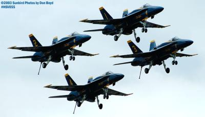 USN Blue Angels F/A-18 Hornets military aviation air show stock photo #3741