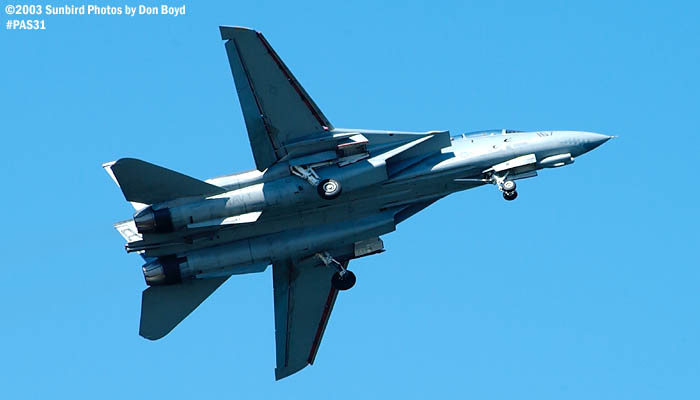 USN F-14 Tomcat from VF-101 Grim Reapers military aviation air show stock photo #4124