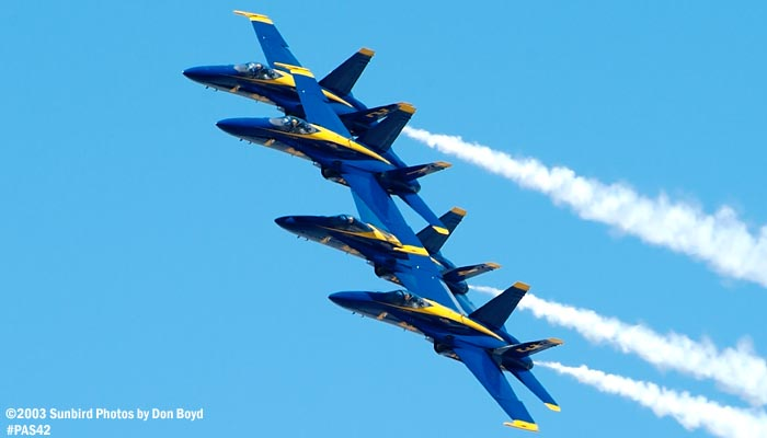 USN Blue Angels F/A-18 Hornets military aviation stock air show photo #4145