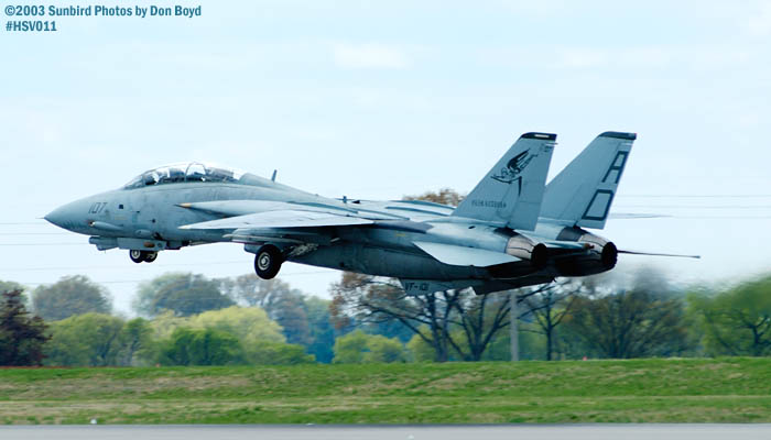 USN F-14 Tomcat from VF-101 Grim Reapers military aviation air show stock photo #3687