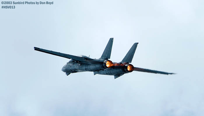 USN F-14 Tomcat from VF-101 Grim Reapers military aviation air show stock photo #3690